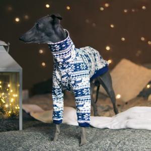 świąteczna bluza zimowa charcik