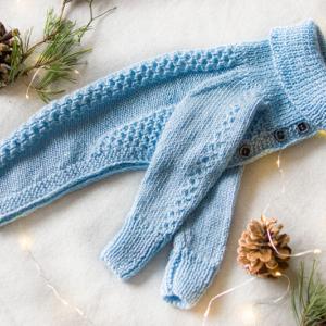 sweterek błękitny dla charcika