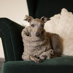 sweterek charcik włoski