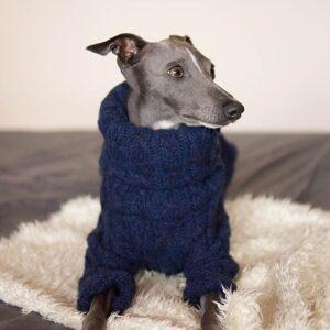 sweter granat dla charcika