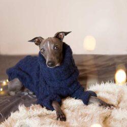 charcik włoski sweterek
