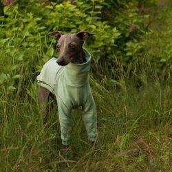 bluza miętowa dla psa