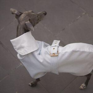 cienka kurtka przeciwdeszczowa dla charcika